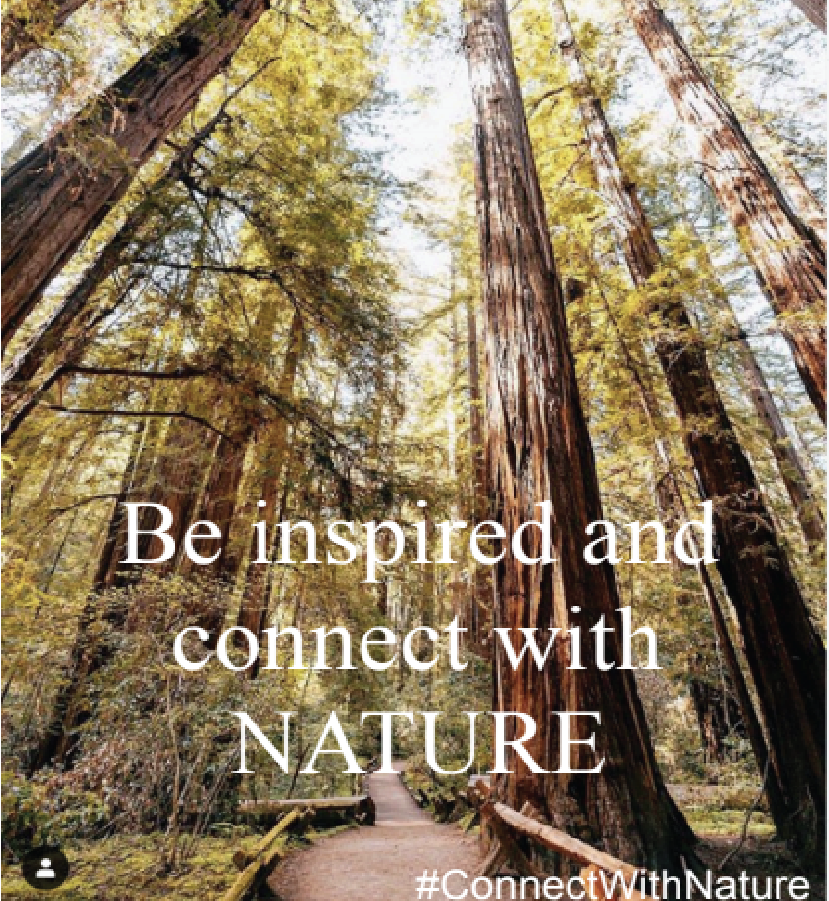 Be Inspired and Connect With Nature